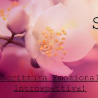 SEI  (Scrittura Emozionale Introspettiva)